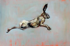 Jumping-Hare