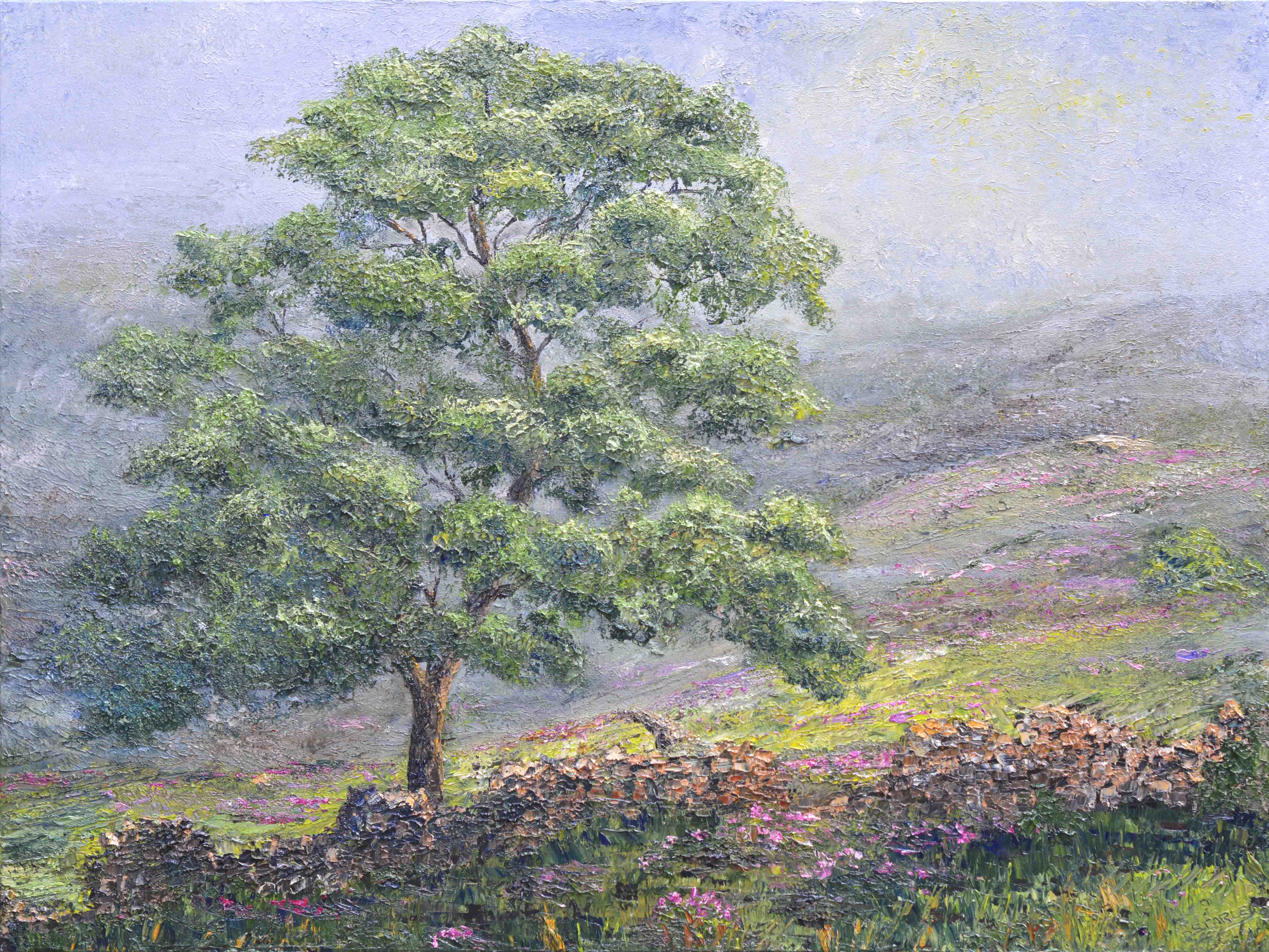 ds588-Haworth-Moor-Sycamore-40x30in-2020-MR-1